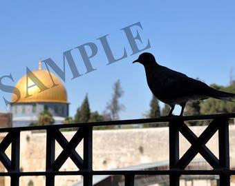 Digital picture photo Jerusalem waiting for peace wallpaper