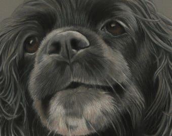 Pet Portrait Dog in Pastels, Dog Art Custom Dog Portrait, Custom Pastel Pet Dog Portrait, Dog Drawing Custom Pastel Art, Custom Pet Portrait