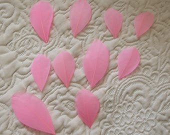 Set 10 pretty pink color tulle leaves many new dimensions of 35 mm to 75 mm