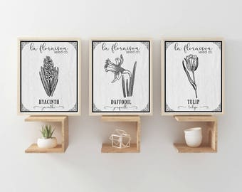 French Style Set of 3 Seed Packet Printables - Spring Flowers