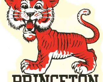 Vintage Style Princeton University  Souvenir Travel Decal sticker college