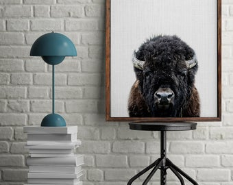 Buffalo Print, Buffalo Photography, Buffalo Nursery, Animal Print, Bison Wall Decor, Bison Print, Woodland Animals, Nursery Art, Buffalo Art