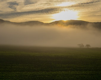 Early Morning Sunrise Print or Canvas , 90% donated to charity
