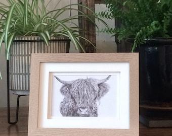 Highland Cattle, Cow Framed Print- 'IThe Highland Hair'