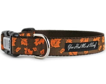 Fall Dog Collar with Orange Leaves, Girl or Boy Dog Collar, Gift Box, Autumn Colors, Brown, Thanksgiving Dog Collar, 1 Inch - Autumn Leaves