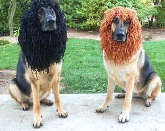 MEDIUM-Dog Lion Mane Halloween Costume