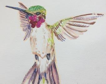 Huey the Hummingbird Watercolor Print