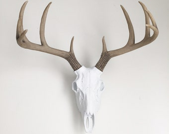 ANY COLOR Resin Deer Skull Wall Mount // Faux Taxidermy // Wall Statue // Animal Skull // Trophy Mount // Tribal Nursery // Boho Chic //