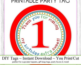 Instant Download - 1st Birthday Printable Party Tag, Birthday Party Tag, DIY Cupcake Topper, You Print, You Cut