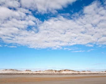 Talbot Island Sand Dunes