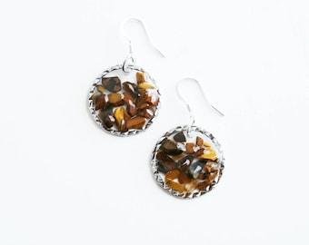 Tigers Eye Crystal Earrings
