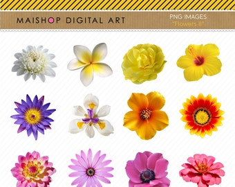Flowers Clipart + Printable Digital Collage Sheet for Stickers, Scrapbooking, Collages, Weeding Invitations, Crafts...