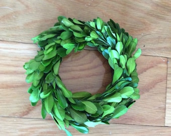 "4"" Micro Mini Boxwood Wreath"