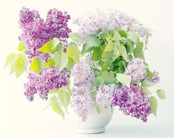 Lilac Print,  Floral Art Print, Still Life, Flower Photography, French Country, Lilac Nursery Decor, Bedroom Decor