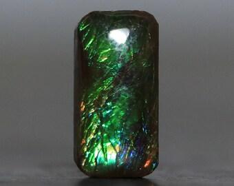 Ammolite Gemstone Fossil Setting Stone (V4298)
