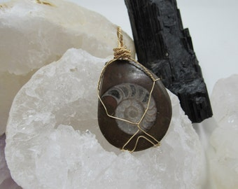 Ammonite Pendant with gold