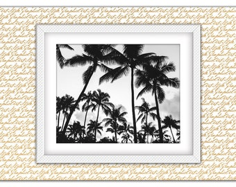 Palm Tree Print, Tree Photography, Palm Tree Wall Prints, Black White Palms, Palm poster, Palm Tree art, Tree Digital Prints, Hawaii Beach