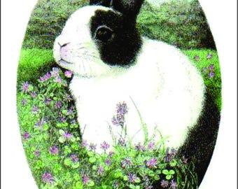 ATC ACEO Benjamin In The Clover Dutch Bunny Rabbit Art Card