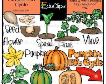 Pumpkin Life Cycle Clip Art Bundle