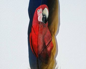 Scarlett Macaw Painting/Feather Art