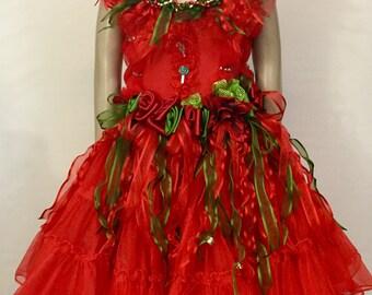 Christmas Joy Fairy Dress