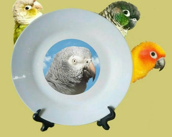 "Timneh African Grey Parrot Blue Sky Clouds White Decorative Ceramic 8"" Plate and Display Stand"