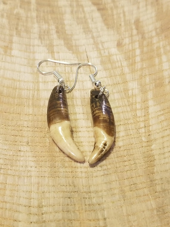 Handmade Real Tibetan Wolf Tooth Silver Earrings Native American Tribal Outdoors Primal Fashion Art Collection (E189)