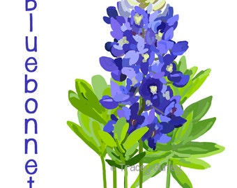 Bluebonnet - Original Art, Bluebonnet clip art, Texas state flower, Bluebonnet painting