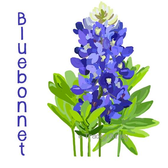 bluebonnet original art bluebonnet clip art texas state rh etsy com bluebonnet clipart bluebonnet flower clipart