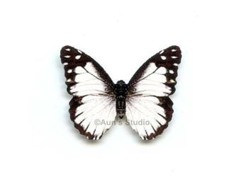12 Small Paper Butterflies, Realistic 1 inch Paper Butterflies - White and black butterfly