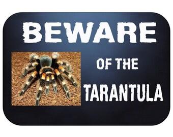 beware of the tarantula brachypelma smithi hamorii spider arachnid door or wall metal sign 210mm x 148mm