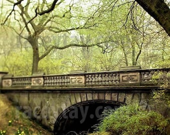 Spring Green, Central Park Photography, Glade Arch, New York Print, Rustic Decor, Nature Photography, Large Wall Art
