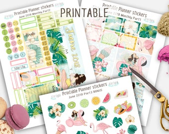Monthly Stickers, Printable Planner Stickers, Summer Planner Stickers, June 2018 monthly Kit, Summer stickers, Floral Stickers, Erin Condren