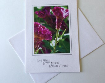 Sun Dappled Photo Note Card Blank Inside Inspirational Quote
