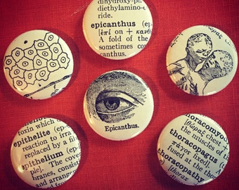 Vintage Medical Magnets Set of Six
