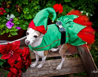 Dog Dress Costume, Elf Christmas, Harness Tutu Dress