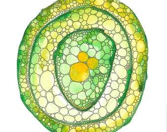 Green Cellular Structure Art Print