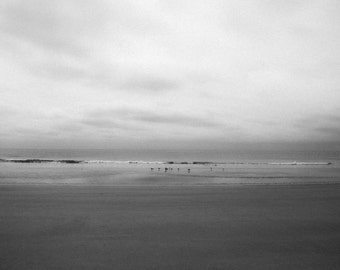 Instant Download Photography Cloudy Beach