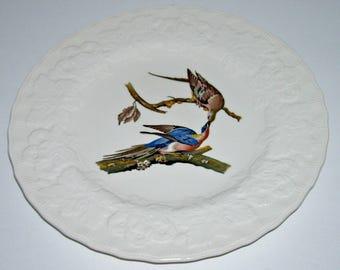 Meakin Passenger Pigeon Birds of America Luncheon Plate