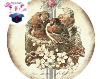 1 cabochon clear 25 mm vintage birds theme