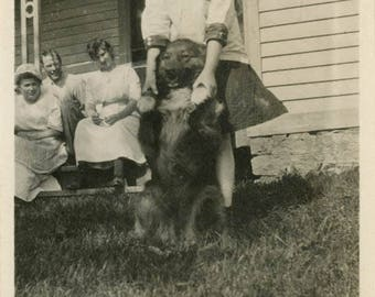 vintage photo 1920 Little Girl Holds Her Dog up in the yard