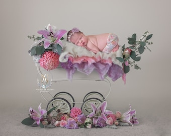 Newborn Digital Backdrop/ Prop / Photography / Fresh flowers Pram (Patricia)