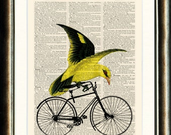 Bird Riding Bicycle - Upcycled vintage book page print on a page from a late 1800s page Buy 3 get 1 FREE