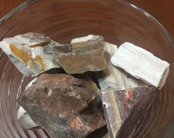 Pocket Stones!  Five Pieces Rough Raw Madagascar Petrified Wood Rock Crystal