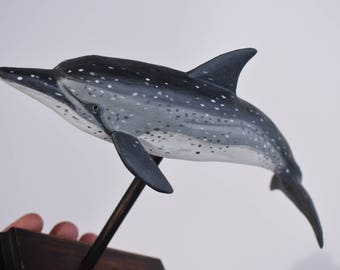 Atlantic Spotted Dolphin in Hardwood #2