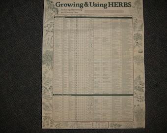 Growing, Using Herbs Chart, 1987