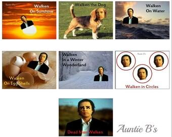 The Walken Series ~ Magnets