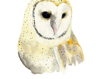 Barn Owl Print, Fine Art Owl Gift, Bird Watercolour Print, 5 x 7 or 8 x 10 or A4 Print, Woodland Painting
