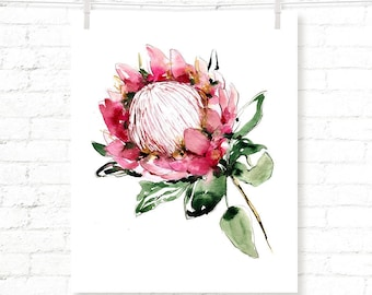 Protea - Flower - Floral - Boho - Watercolor - Art Print
