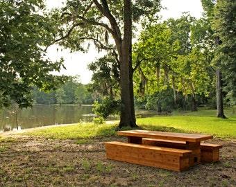 Rowan Outdoor Table and Benches, Modern - Cedar (8 Seater)